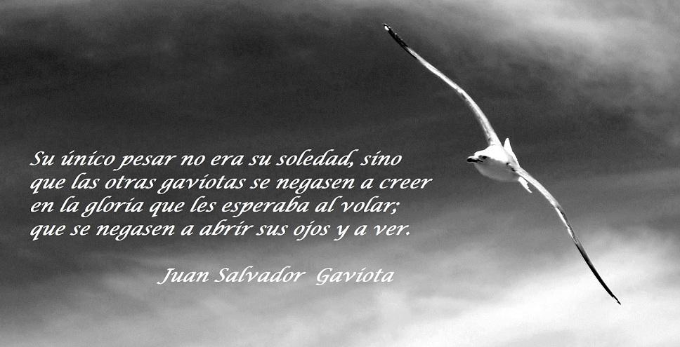 Juan Salvador Gaviota. (Richard Bach)