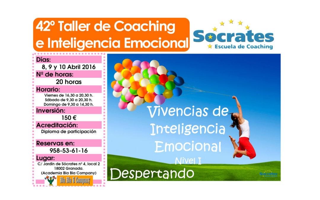 Taller 42º: Vivencias de Inteligencia Emocional. Nivel I.